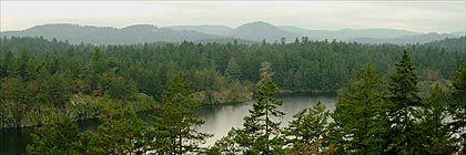 Mount Finlayson from Thetis Lake BC
