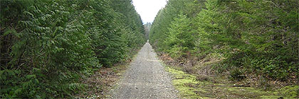 Trans Canada Trail Vancouver Island Section BC
